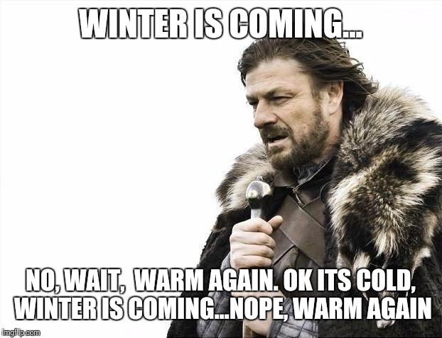 Image result for winter is coming wait no its not meme