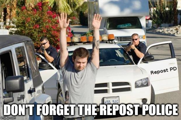repost police | DON'T FORGET THE REPOST POLICE | image tagged in repost police | made w/ Imgflip meme maker