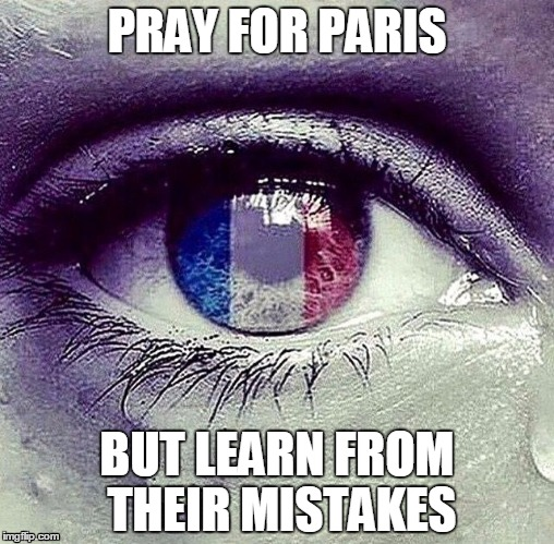 Use Your Hearts AND Your Minds People | PRAY FOR PARIS BUT LEARN FROM THEIR MISTAKES | image tagged in prayers for paris,terrorism,think | made w/ Imgflip meme maker