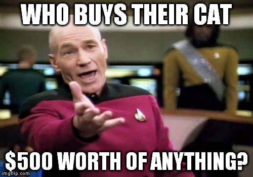 Picard Wtf Meme | WHO BUYS THEIR CAT $500 WORTH OF ANYTHING? | image tagged in memes,picard wtf | made w/ Imgflip meme maker