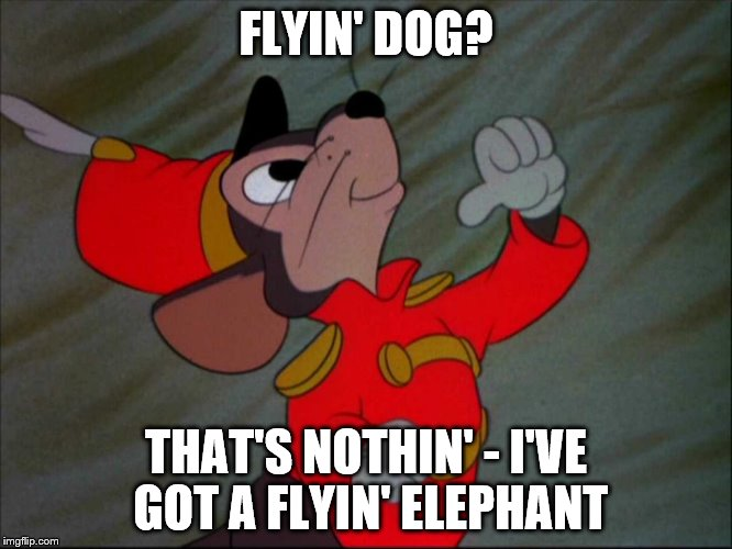FLYIN' DOG? THAT'S NOTHIN' - I'VE GOT A FLYIN' ELEPHANT | image tagged in dumbo mouse | made w/ Imgflip meme maker
