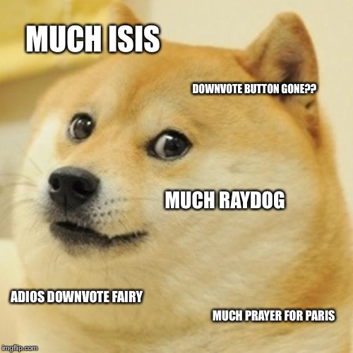 Summary of imgflip past few days  | MUCH ISIS DOWNVOTE BUTTON GONE?? MUCH RAYDOG ADIOS DOWNVOTE FAIRY MUCH PRAYER FOR PARIS | image tagged in memes,doge,isis,pray for paris,raydog,downvote fairy | made w/ Imgflip meme maker