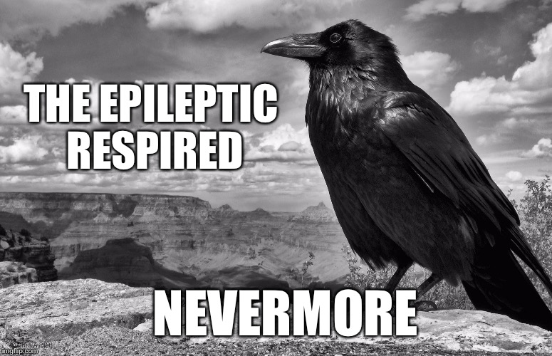 THE EPILEPTIC RESPIRED NEVERMORE | made w/ Imgflip meme maker