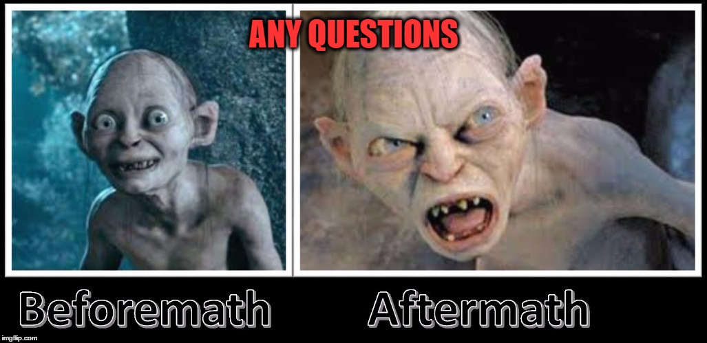 aftermath golum | ANY QUESTIONS | image tagged in aftermath golum | made w/ Imgflip meme maker