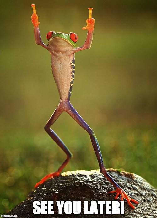 Careless Frog | SEE YOU LATER! | image tagged in fuck you,good bye,i'm outta here | made w/ Imgflip meme maker