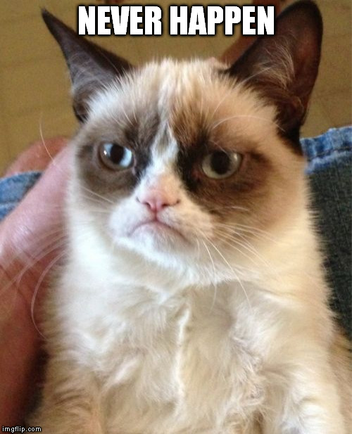 Grumpy Cat Meme | NEVER HAPPEN | image tagged in memes,grumpy cat | made w/ Imgflip meme maker