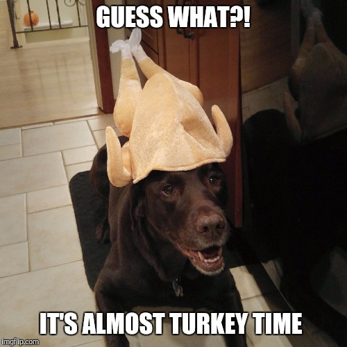 ucxpm almost turkey time imgflip