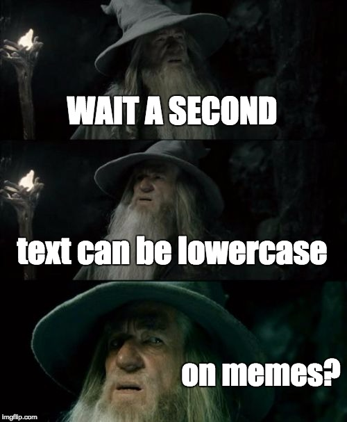 Confused Gandalf Meme | WAIT A SECOND text can be lowercase on memes? | image tagged in memes,confused gandalf | made w/ Imgflip meme maker