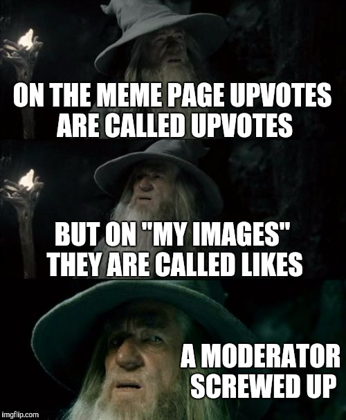 "Nothing against the mods, just sayin'... | ON THE MEME PAGE UPVOTES ARE CALLED UPVOTES BUT ON ""MY IMAGES"" THEY ARE CALLED LIKES A MODERATOR SCREWED UP 