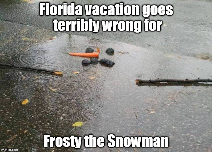 Florida vacation goes terribly wrong for Frosty the Snowman | image tagged in florida,frosty,snowman,snow,christmas vacation,vacation | made w/ Imgflip meme maker