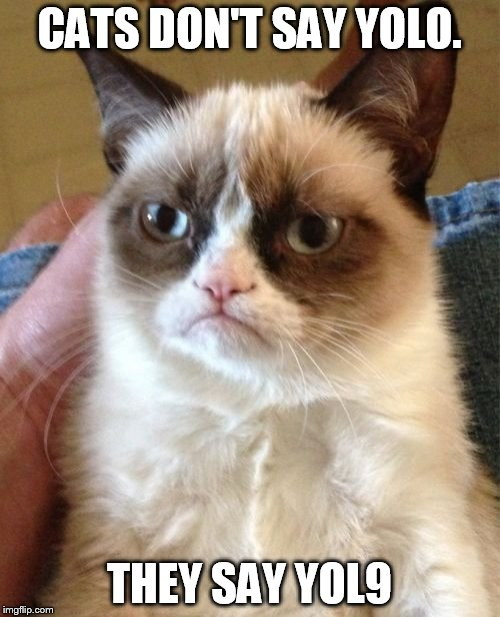Grumpy Cat Meme | CATS DON'T SAY YOLO. THEY SAY YOL9 | image tagged in memes,grumpy cat | made w/ Imgflip meme maker