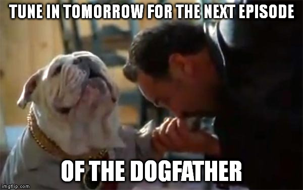 TUNE IN TOMORROW FOR THE NEXT EPISODE OF THE DOGFATHER | made w/ Imgflip meme maker