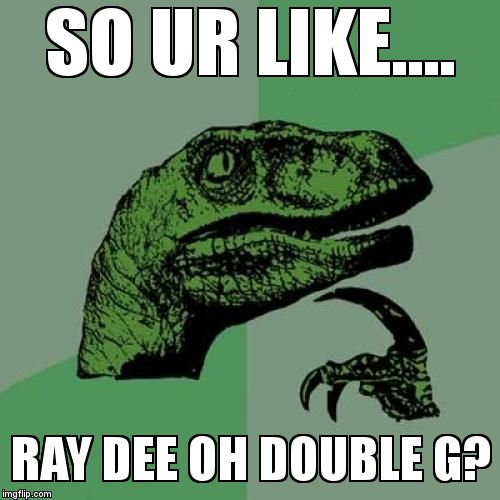 Philosoraptor Meme | SO UR LIKE.... RAY DEE OH DOUBLE G? | image tagged in memes,philosoraptor | made w/ Imgflip meme maker
