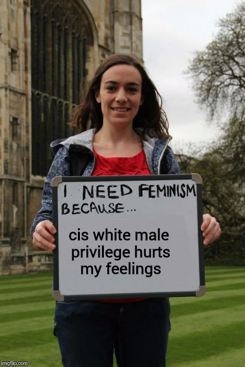 I need femtardation because | cis white male privilege hurts my feelings | image tagged in i need femtardation because | made w/ Imgflip meme maker