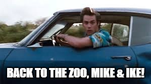 ace ventura | BACK TO THE ZOO, MIKE & IKE! | image tagged in ace ventura | made w/ Imgflip meme maker