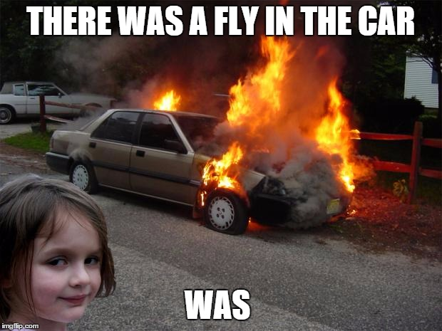 disaster girl car | THERE WAS A FLY IN THE CAR WAS | image tagged in disaster girl car | made w/ Imgflip meme maker