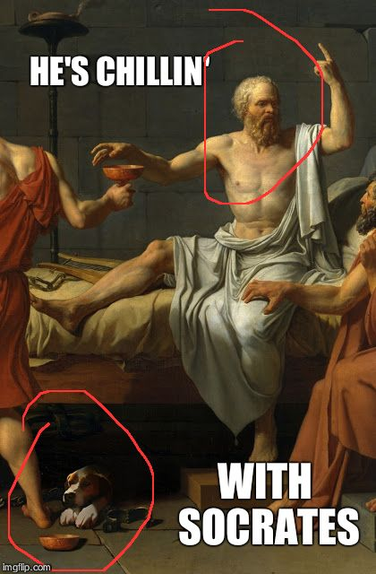 Socrates and Raydog | HE'S CHILLIN' WITH SOCRATES | image tagged in socrates and raydog | made w/ Imgflip meme maker