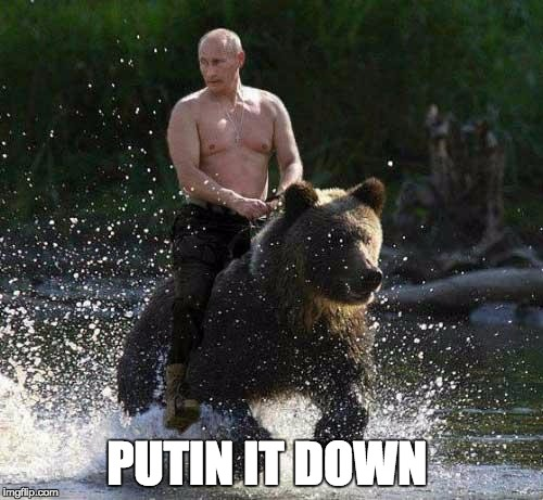 Putin Thats Cute | PUTIN IT DOWN | image tagged in putin thats cute | made w/ Imgflip meme maker