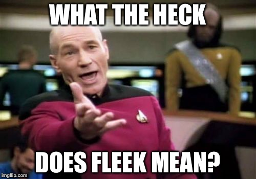 uh2lw girl was saying that she was fleek all class, wtf does that mean,Fleek Meme
