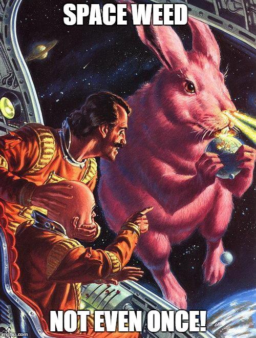 Bun buns iiiiinnnnnn spaaaaaceeeeee imgflip for Drugs in space