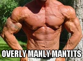 OVERLY MANLY MANTITS | made w/ Imgflip meme maker