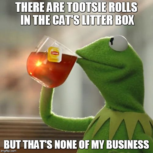 But Thats None Of My Business Meme | THERE ARE TOOTSIE ROLLS IN THE CAT'S LITTER BOX BUT THAT'S NONE OF MY BUSINESS | image tagged in memes,but thats none of my business,kermit the frog | made w/ Imgflip meme maker