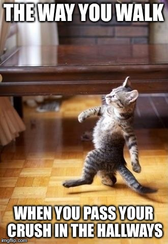 Cool Cat Stroll | THE WAY YOU WALK WHEN YOU PASS YOUR CRUSH IN THE HALLWAYS | image tagged in memes,cool cat stroll | made w/ Imgflip meme maker