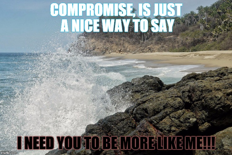 compromise | COMPROMISE, IS JUST A NICE WAY TO SAY I NEED YOU TO BE MORE LIKE ME!!! | image tagged in compromise,like me | made w/ Imgflip meme maker
