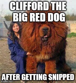 Clifford The Big Red Dog Meme