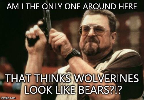 Am I The Only One Around Here Meme | AM I THE ONLY ONE AROUND HERE THAT THINKS WOLVERINES LOOK LIKE BEARS?!? | image tagged in memes,am i the only one around here | made w/ Imgflip meme maker