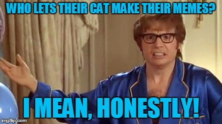 WHO LETS THEIR CAT MAKE THEIR MEMES? I MEAN, HONESTLY! | made w/ Imgflip meme maker