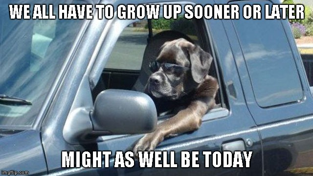 WE ALL HAVE TO GROW UP SOONER OR LATER MIGHT AS WELL BE TODAY | made w/ Imgflip meme maker