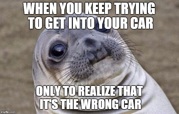 Awkward Moment Sealion Meme | WHEN YOU KEEP TRYING TO GET INTO YOUR CAR ONLY TO REALIZE THAT IT'S THE WRONG CAR | image tagged in memes,awkward moment sealion | made w/ Imgflip meme maker