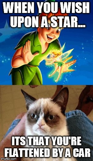Grumpy Cat can sing...who knew? | WHEN YOU WISH UPON A STAR... ITS THAT YOU'RE FLATTENED BY A CAR | image tagged in memes,grumpy cat does not believe | made w/ Imgflip meme maker