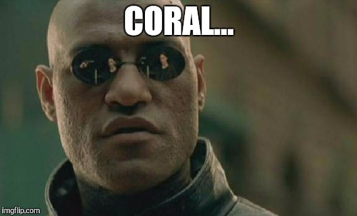 CORAL... | image tagged in memes,matrix morpheus | made w/ Imgflip meme maker