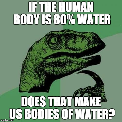 Philosoraptor Meme | IF THE HUMAN BODY IS 80% WATER DOES THAT MAKE US BODIES OF WATER? | image tagged in memes,philosoraptor | made w/ Imgflip meme maker