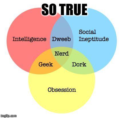 Am ia geek nerd or dork