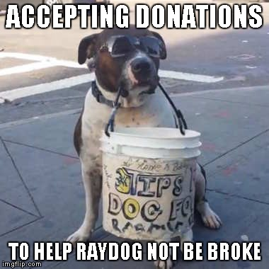 ACCEPTING DONATIONS TO HELP RAYDOG NOT BE BROKE | made w/ Imgflip meme maker