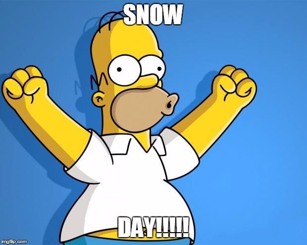 Woohoo Homer Simpson | SNOW DAY!!!!! | image tagged in woohoo homer simpson | made w/ Imgflip meme maker