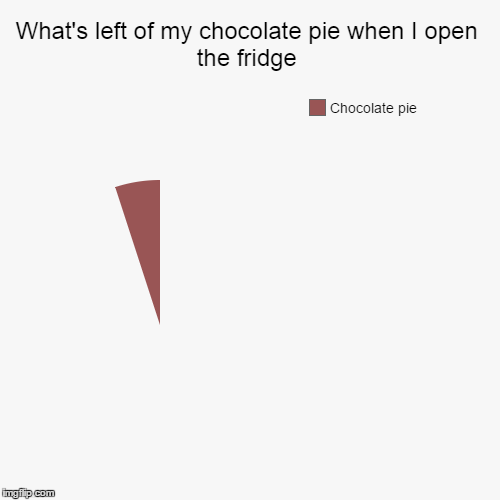 What's left of my chocolate pie when I open the fridge | Chocolate pie | image tagged in funny,pie charts | made w/ Imgflip pie chart maker