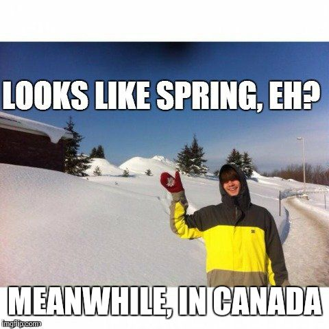 canada | MEANWHILE, IN CANADA | image tagged in canada | made w/ Imgflip meme maker