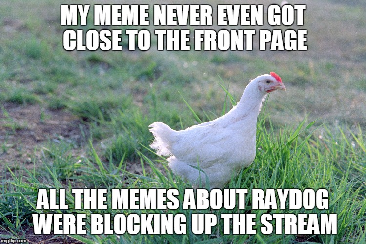 MY MEME NEVER EVEN GOT CLOSE TO THE FRONT PAGE ALL THE MEMES ABOUT RAYDOG WERE BLOCKING UP THE STREAM | made w/ Imgflip meme maker