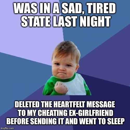 Success Kid Meme | WAS IN A SAD, TIRED STATE LAST NIGHT DELETED THE HEARTFELT MESSAGE TO MY CHEATING EX-GIRLFRIEND BEFORE SENDING IT AND WENT TO SLEEP | image tagged in memes,success kid,AdviceAnimals | made w/ Imgflip meme maker