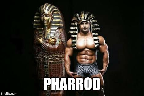 PHARROD | image tagged in p | made w/ Imgflip meme maker