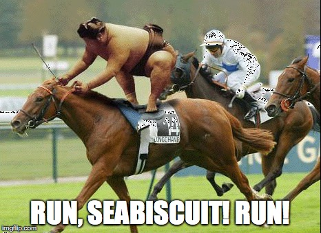 You can do it! | RUN, SEABISCUIT! RUN! | image tagged in samurai,seabiscuit,sumo,sumo confidence | made w/ Imgflip meme maker