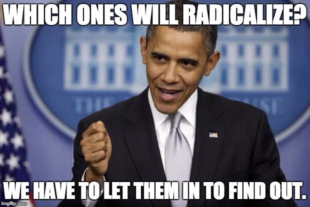 Barack Obama | WHICH ONES WILL RADICALIZE? WE HAVE TO LET THEM IN TO FIND OUT. | image tagged in barack obama | made w/ Imgflip meme maker