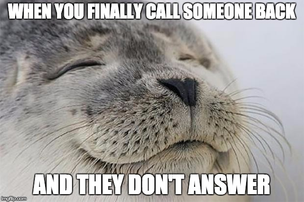 Satisfied Seal Meme | WHEN YOU FINALLY CALL SOMEONE BACK AND THEY DON'T ANSWER | image tagged in memes,satisfied seal,funny | made w/ Imgflip meme maker