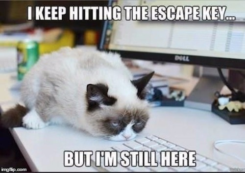 tainted love, oh | . | image tagged in memes,grumpy cat | made w/ Imgflip meme maker