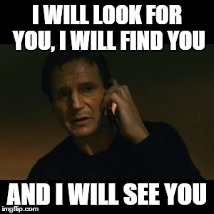 Liam Neeson Taken Meme | I WILL LOOK FOR YOU, I WILL FIND YOU AND I WILL SEE YOU | image tagged in memes,liam neeson taken | made w/ Imgflip meme maker