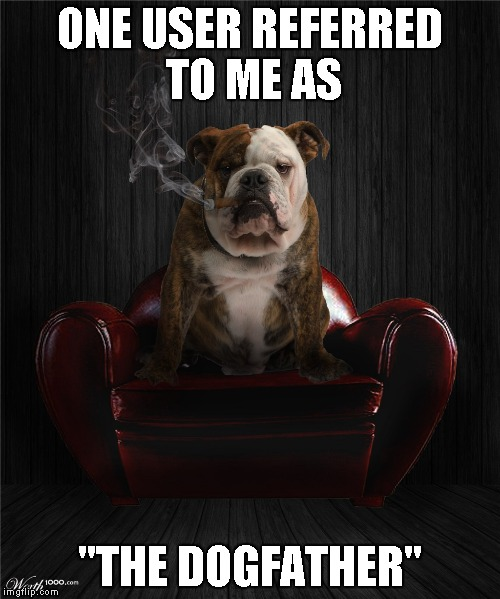"ONE USER REFERRED TO ME AS ""THE DOGFATHER"" 